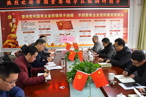 市财政局(国资委)党委副书记、副局长陈陆林一行来我公