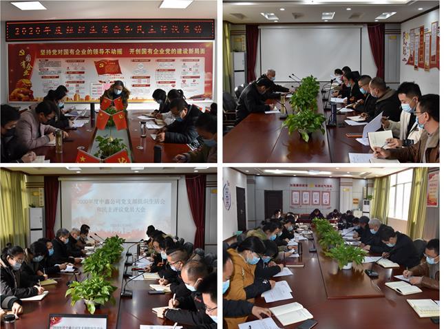中鑫公司党支部开展组织生活会和民主评议党员活动