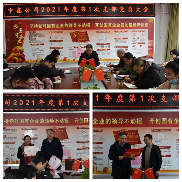 中鑫公司召开2021年度第一次支部党员大会